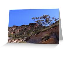 A lone tree in the rugged landscape Greeting Card