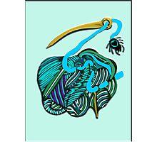 lio azul Photographic Print