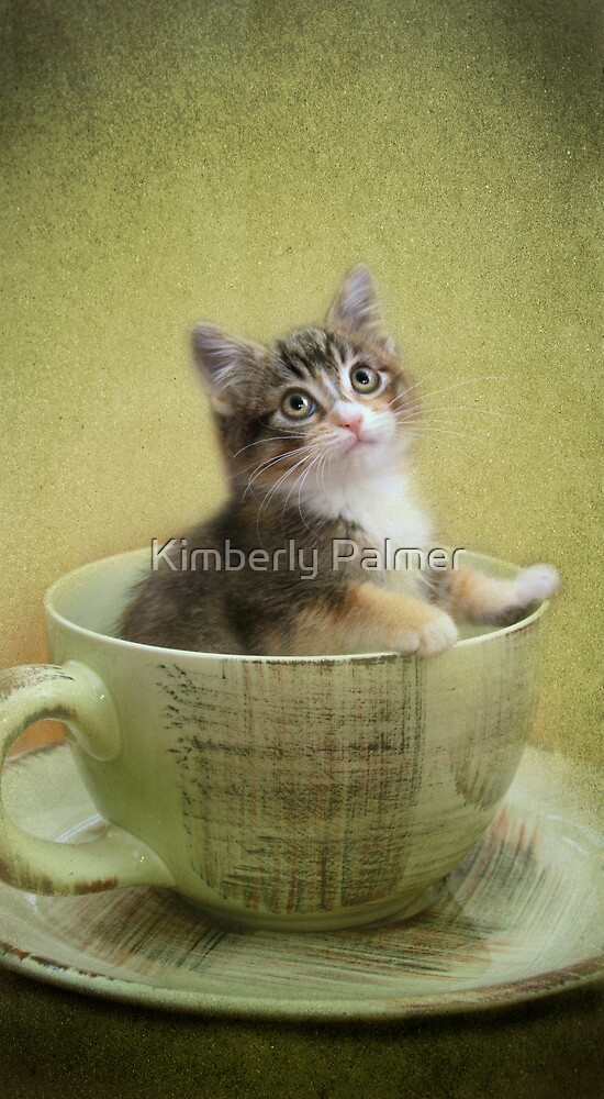 Would you like a spot of tea? by Kimberly Palmer