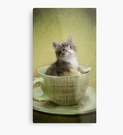 Would you like a spot of tea? Metal Print