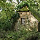 Stone Cottage Overgrown by A.M. Ruttle