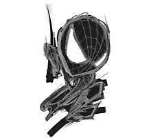 black spider! Photographic Print
