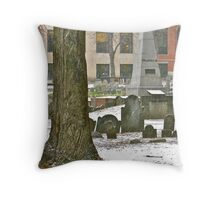 Franklin Family Monument Throw Pillow