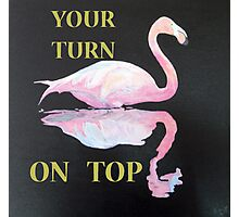 YOUR TURN ON TOP, Flamingo Photographic Print