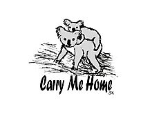 Carry me home Photographic Print