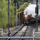 Steam rail K153 approaching Wattle Glen 20150830 0232 by Fred Mitchell