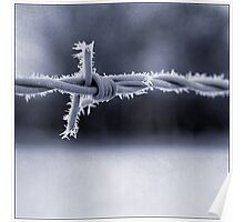 Frosted Barbed Wire Poster