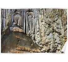 Carlsbad Caverns Detail 5 Poster