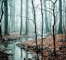Winding Creek by O. Joy
