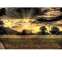 Sun Over Trees Photographic Print