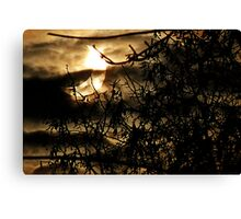 solar eclipse of January 4, 2011 Canvas Print