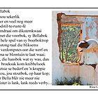 Bellabok  by Rina Greeff