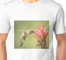 Ruby Throated Hummingbird 10-2015 Unisex T-Shirt