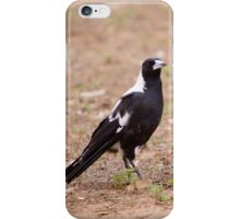 Australian Magpie iPhone Case/Skin