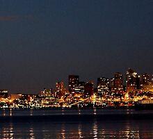 Seattle Skyline by Richard Miranda
