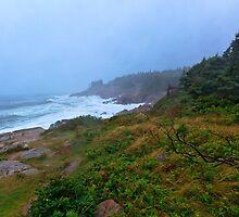 Cape Breton Storm by bengraham