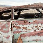 Remains of the Day - Death Valley by Rick Gustafson