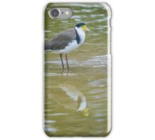 Masked Lapwing (Spur Winged Plover) iPhone Case/Skin
