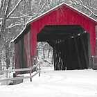 Sandy Creek Covered Bridge in Winter by Thomas Byron