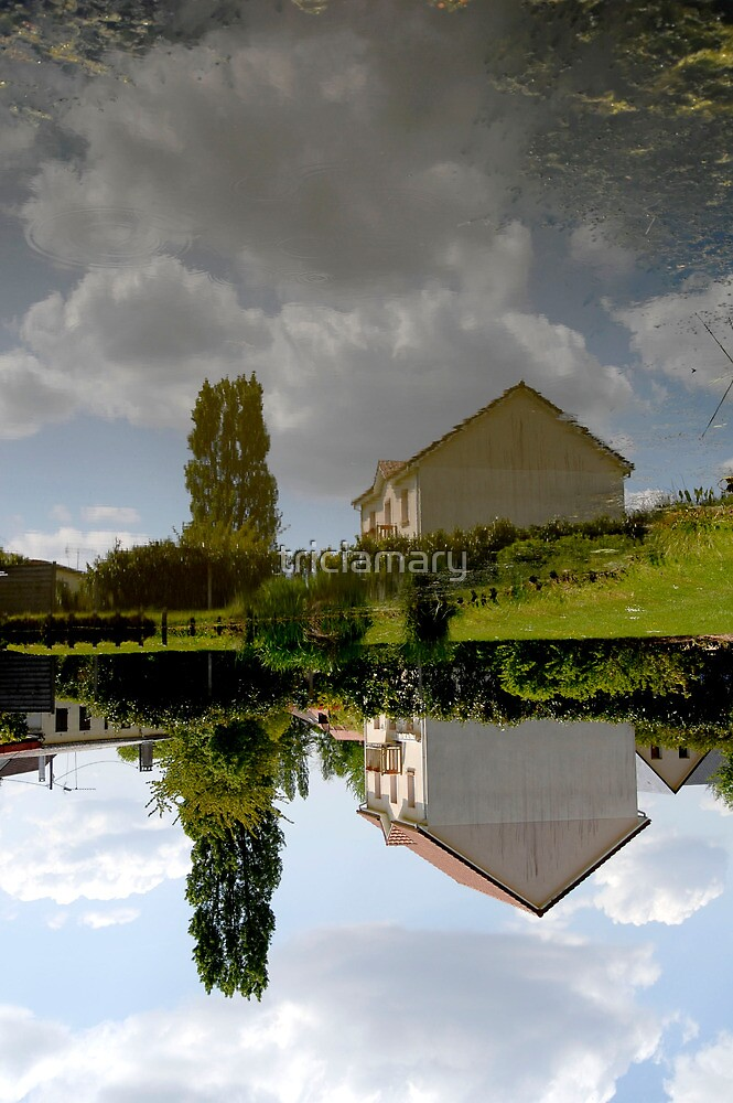 Twisted fish pond at La Londe, Normandy by triciamary