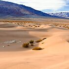 Tucki Mt./Mosaic - Death Valley by Rick Gustafson