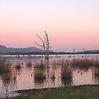 Sunrise at Lake Fyans by crickmedia
