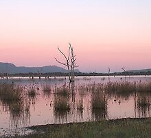 Sunrise at Lake Fyans by crickmedia
