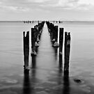 The Dell at Clifton Springs #1 by Jason Green