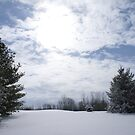 snow blind in indiana by katpartridge