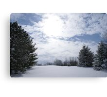 snow blind in indiana Canvas Print