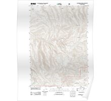 USGS Topo Map Oregon Summerfield Ridge 20110816 TM Poster