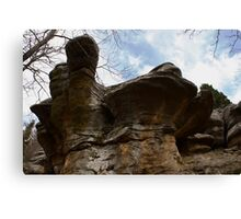 Mushrooming to the Gods Canvas Print