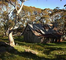 Wallace Hut by Adam Branford