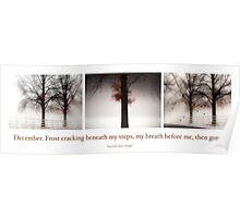 Winter Triptych Poster