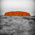 Red Centre by Pauline Tims