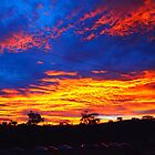 Sunrise in Autumn, Kilmore East VIC Australia by Margaret Morgan (Watkins)