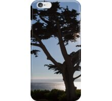 Sihouette of a Tree iPhone Case/Skin