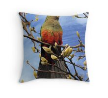 King Parrot - Hello from Drouin Throw Pillow