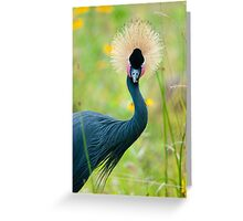 """""""Fancy Feathers"""" - an african crowned crane Greeting Card"""