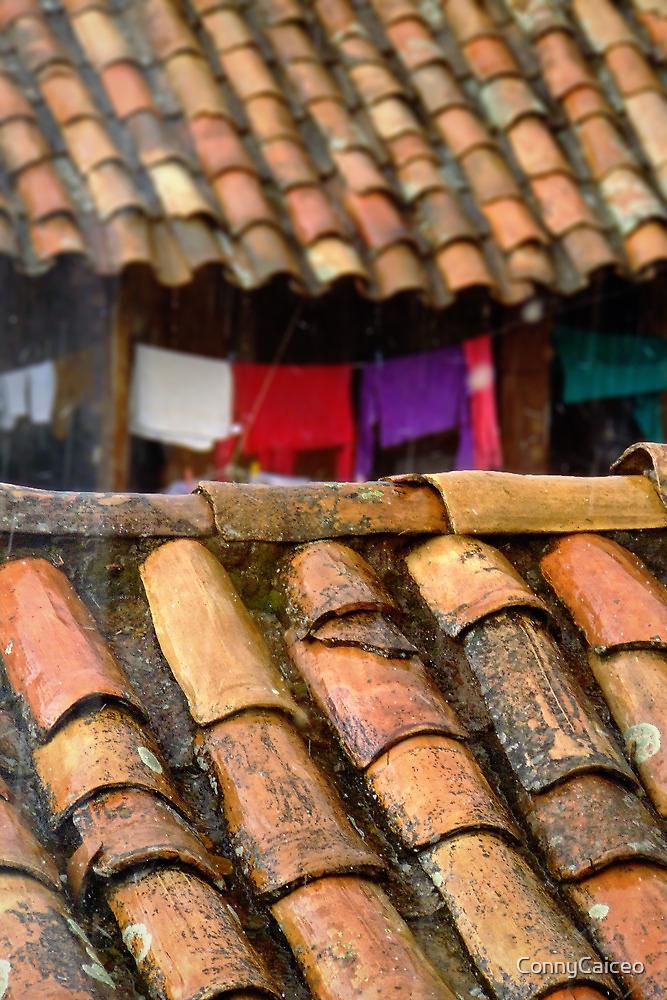 Dia de lluvia en Cusco by Constanza Caiceo