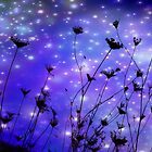 Fireflies *(Sold a Canvas Copy on RB)* by aussiedi