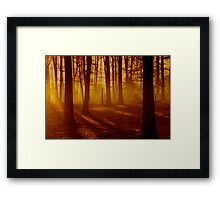 Blazon Embers Framed Print