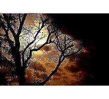 GOBLIN NIGHT~ Photographic Print