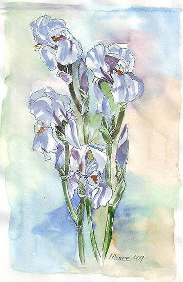 Irises Blue by Maree Clarkson