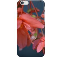 Trailing Begonia in red iPhone Case/Skin