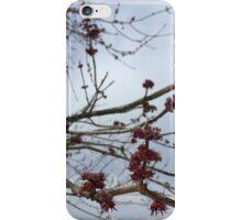 Frozen Flower Buds iPhone Case/Skin