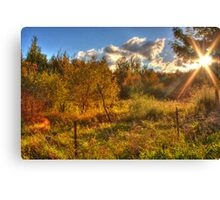 Fall Colours - Mer Bleue Bog Canvas Print