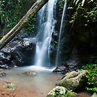 Kadjagooma Falls, Warrie Circuit by Shelley Warbrooke