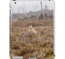 Sandy Morphology Bennetts Wallaby iPad Case/Skin