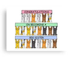 Congratulations on becoming a big sister. Canvas Print